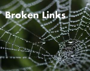 Broken Links | Guy L. Pace