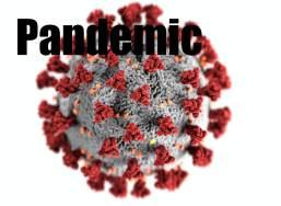 Pandemic | Guy L. Pace