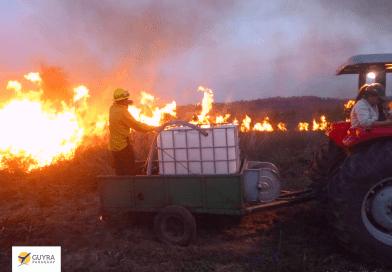 Guardaparques y bomberos forestales combaten incendios en San Rafael