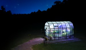 Grandio Greenhouse at night, Guy Sagi Photography, greenhouse at night, Raeford, North Carolina