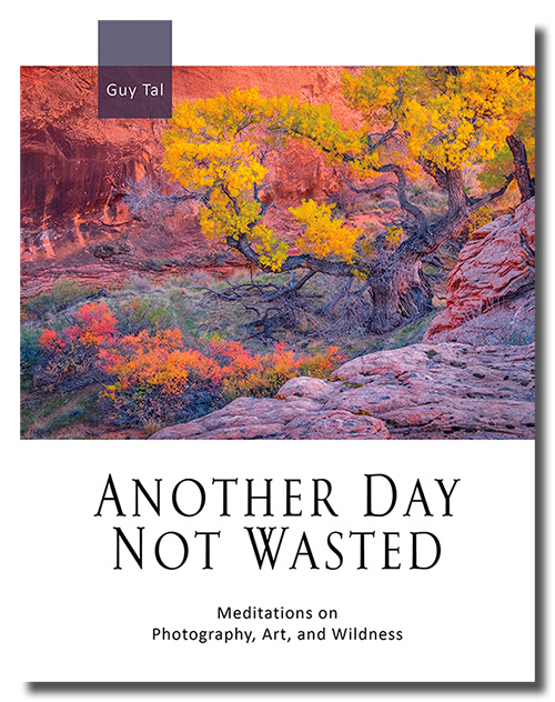 Another Day Not Wasted by Guy Tal