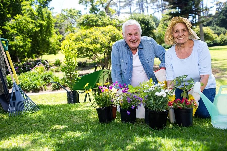 5 Expert Gardening Tips