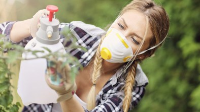 Adult woman spraying plants in garden to protect from diseases