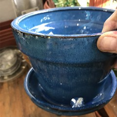 Best pots for indoor plants