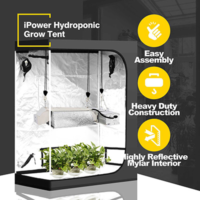 Best Hydroponic Grow Tent Review