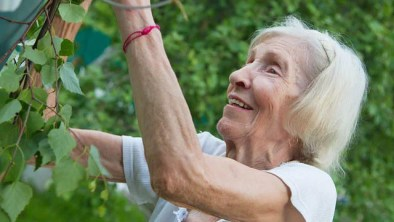 Gardening For Older Generations