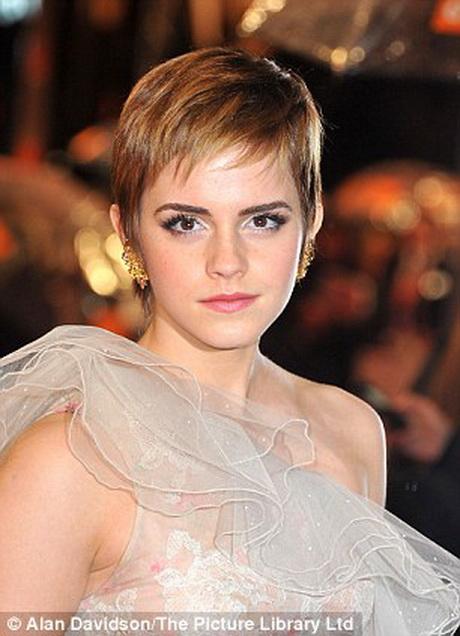 Pixie Haircut Wiki