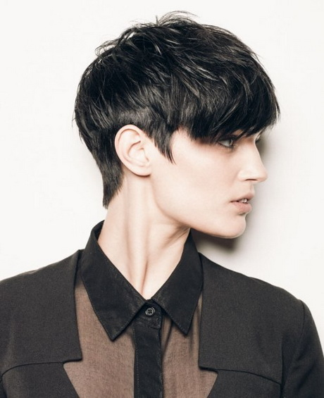 Pixie Cut With Long Top