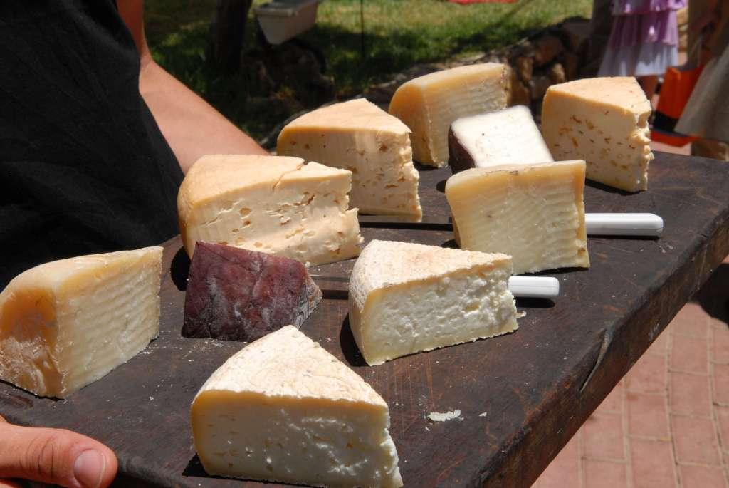 גבינות עיזים על קרש