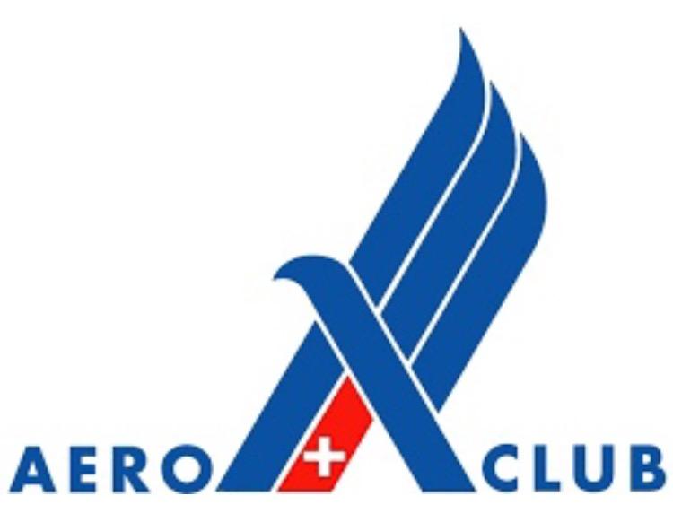 AeCS Seminario Safety 2019