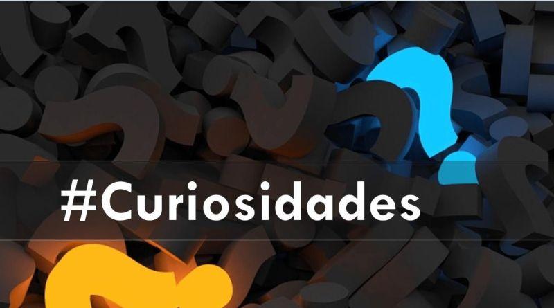 curiosidades, GVT Noticias,