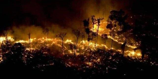 #PrayForAmazonias ¡Arde el último pulmón del mundo!