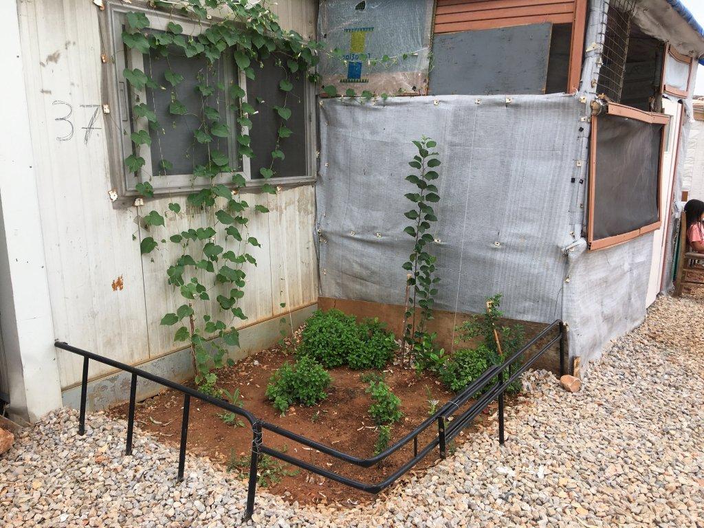 Un résident de Malakasa a construit un petit jardin autour de son habitation de fortune. Crédit : DR