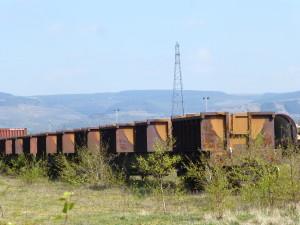 Margam freight