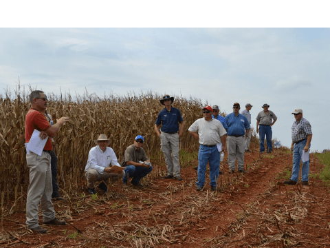 Dr Wade Thomason, foreground, speaks during the Corn and Carbon Field Day  held at Battle Park Farms, Culpeper, 2018.
