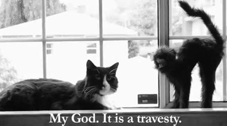 gwendalperrin.net henri le chat noir halloween