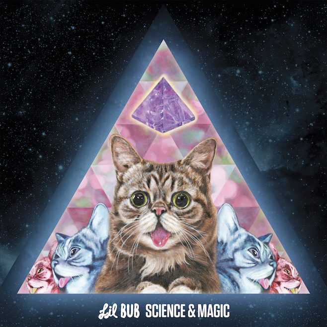lil bub science magic album gwendalperrin.net