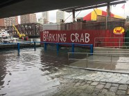 The tides, which also rose above normal levels in October, impacted local businesses like the Seaport district's Barking Crab. As sea levels in Boston continue to rise, sights like the King Tides are likely to become a more frequent occurrence.