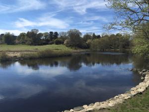 Concord river view