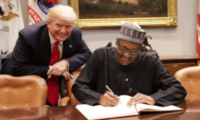 Trump should learn from Buhari
