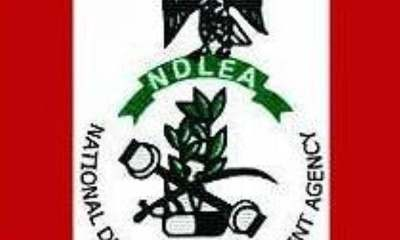 NDLEA Arrests Fake Security Agent Trafficking Drugs between Nigeria, Benin Republic
