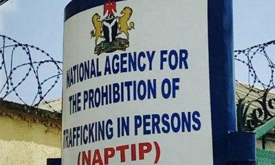 Human Traffickers Target 70% Women — DG NAPTIP