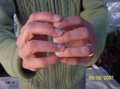 A Pair Of Hands