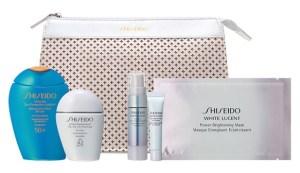 Shiseido 360° Sun Protection Set