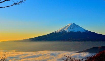 Genesisサイトの検索フォームを日本語化する方法