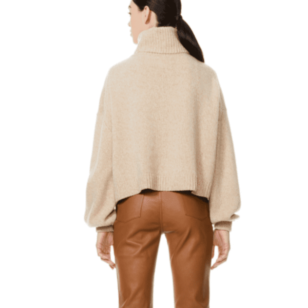 Franklyn Relaxed Turtleneck