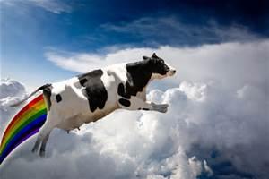 Flying Unicorn cow