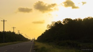 Sunset at the road leading to the Berbice Bridge