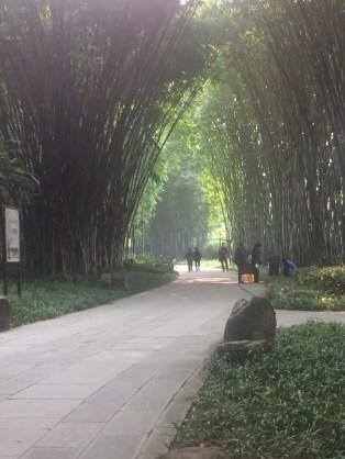 Wanjian Bamboo Garden