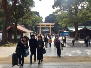 A look back at the entrance to the main Meiji shrine.