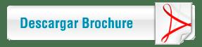 triumphant-broushure