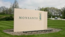 Monsanto-644x363