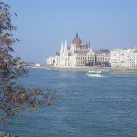 5 saker att köpa i Budapest