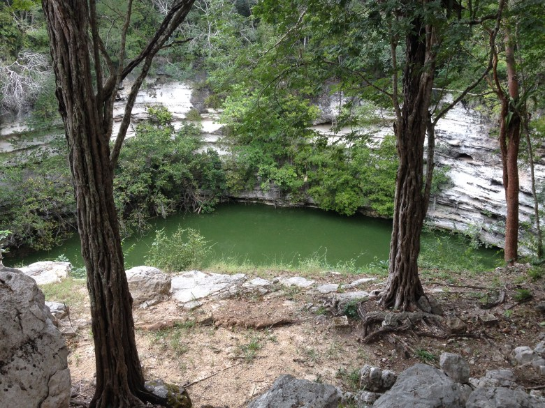 cenote iguana