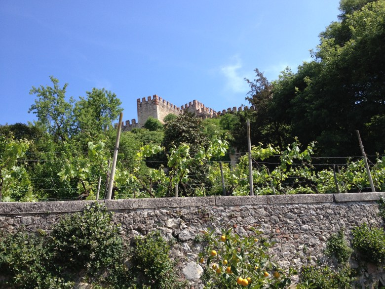 Castle seen from the garden