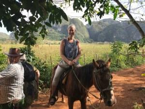 gyllintours till häst