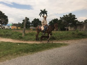 riding man with his dog