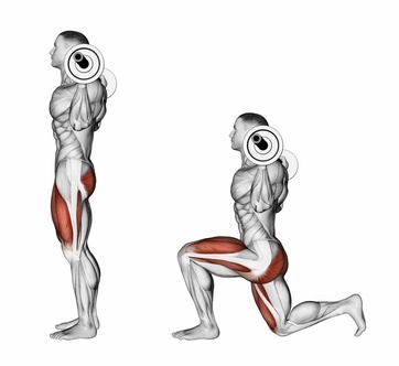 barbell lunges quads exercises