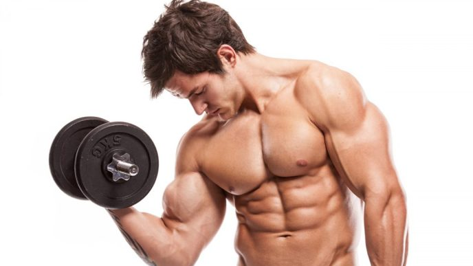 increase muscle size biceps