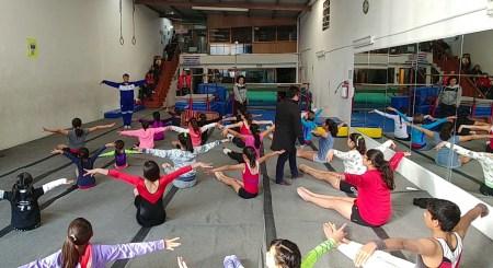 clínica de gimnasia