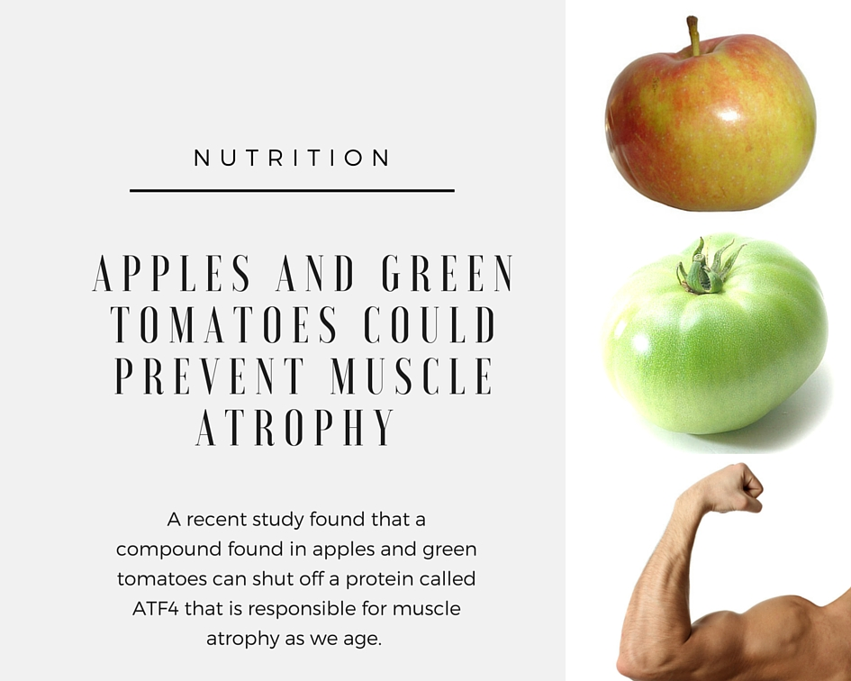 Apples and Green Tomatoes Could Help Prevent Muscle Atrophy