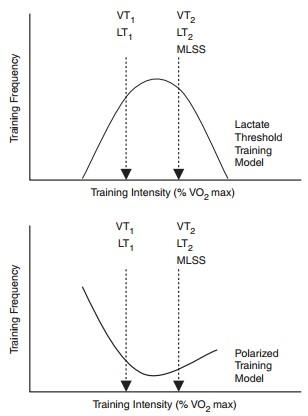 polarized training chart