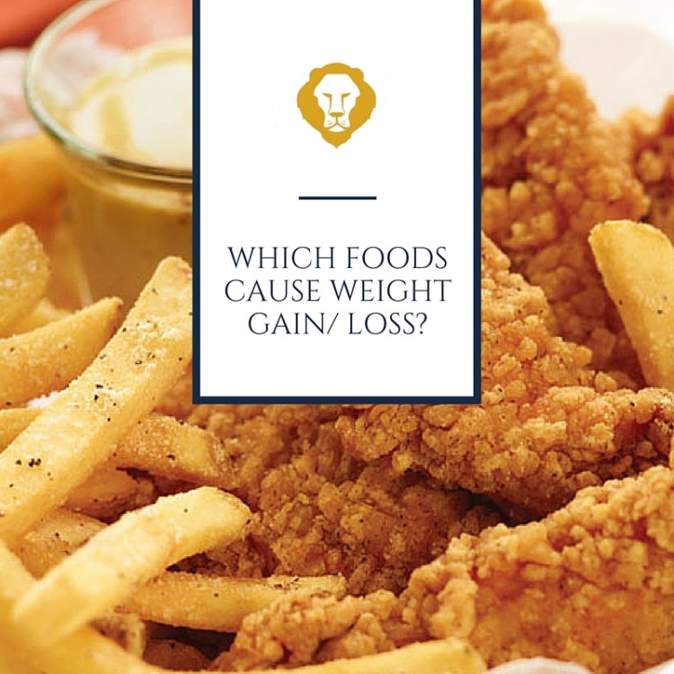 Which Foods Cause Weight Gain/ Loss?