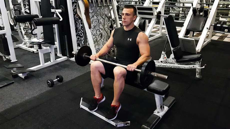 Seated Barbell Calf Raises