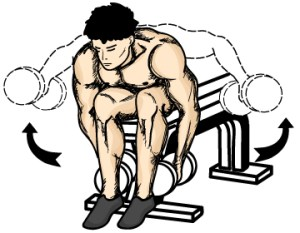 Seated latteral raises (Bent over)