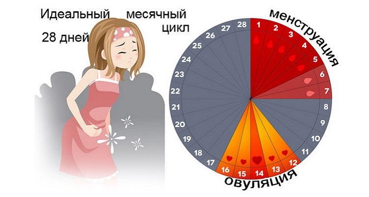 التفتيش النسائي - أساس التشخيصات من التأخير الشهري